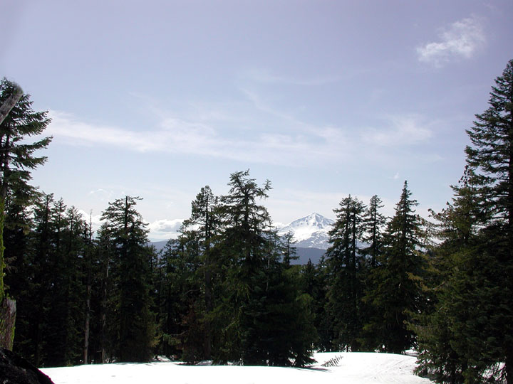 Viewing out through open snow-covered forest to a tall snowcapped mountain peak in the distance.