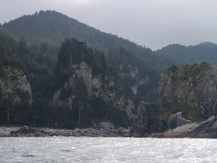 Extremely rocky and steep cliffs are topped with trees.