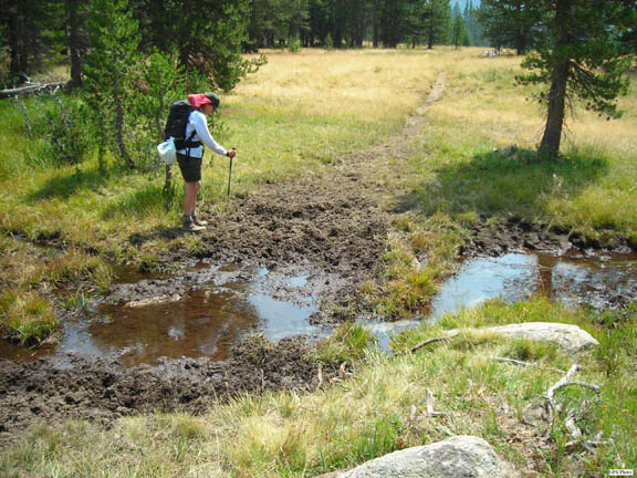 A backpacker inspects a stock watering hole.