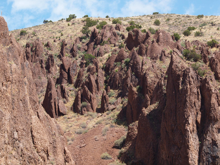 Red rock spires extrude out of a desert hillside.