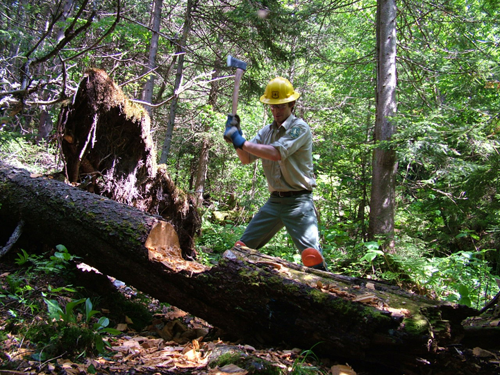 A male ranger chops at a fallen tree with an axe in the Breadloaf Wildnerness.