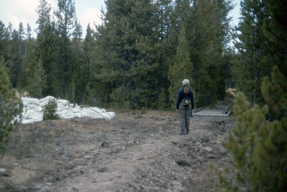 A worker stands on a trail in the Yellowstone National Park.