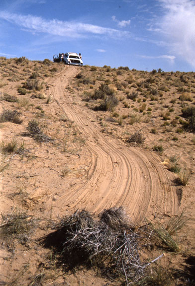 A car is being dragged out of the Wilderness, creating a trail where the plants have been pulled out.