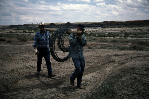 Two workers carry a two large spools of barbed wire on a wood pole.