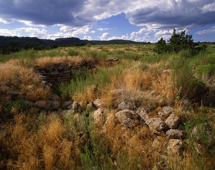Overgrown rock ruins