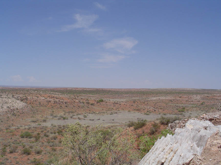 An open desert plane, brown dirt and small tufts of green brush dotting the landscape under a pastel blue sky.