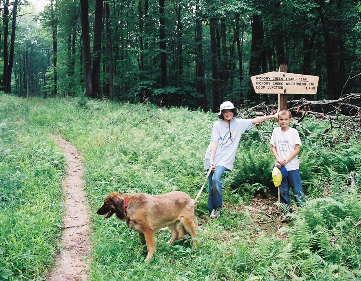Two children stop with their dog amid green ground foliage, while a thick concentration of trees stand in the background.
