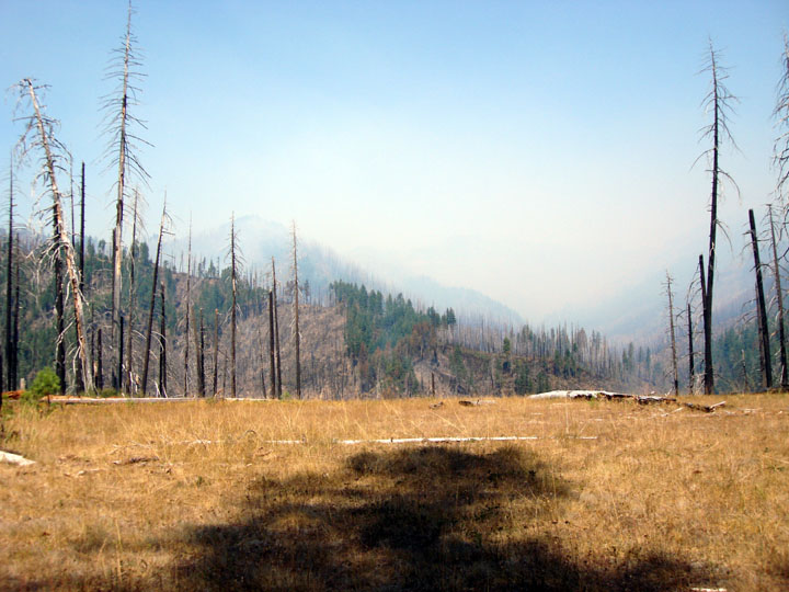 Viewing out over a small grassy bluff to a hilly, burned, and smokey landscape in the distance.