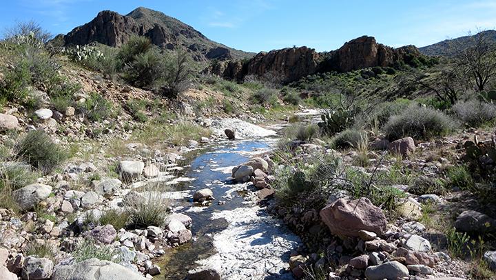 A creek flows through desert rocks and shrubs