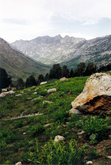 A large white boulder sitting in a green alpine meadow, looking up-valley towards a barren rocky slope, rising to jagged ridges above.