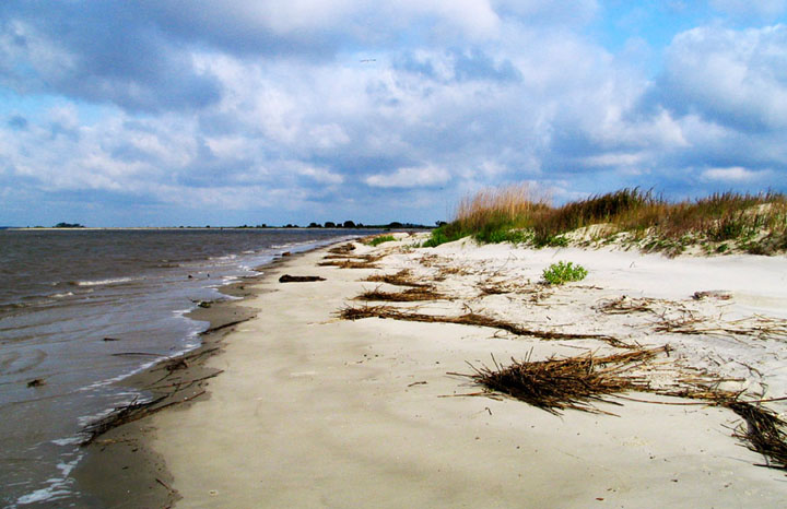 A white sand beach bordered by grassy dunes stretches off into the distance, as puffy white clouds dot the sky.