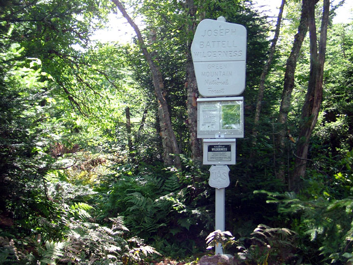 A tall white signpost stands along the trail, amid the dense forest undergrowth.