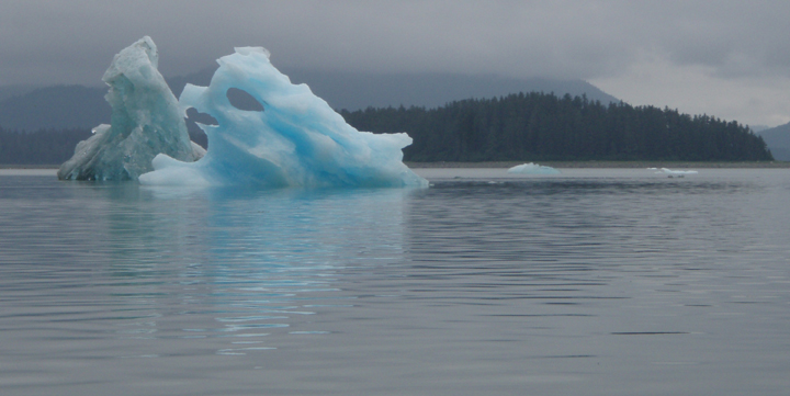Light blue icebergs poke out of the dark blue bay waters with forested mountains in the background.