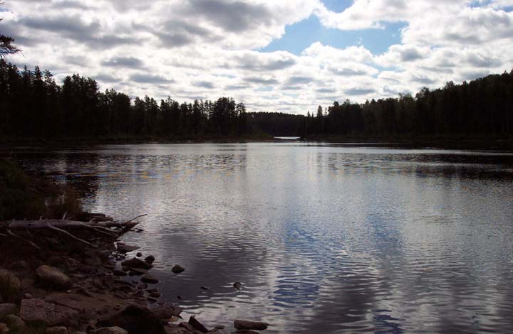 A wide waterway bordered by dense forest, the silver surface of the water mirroring the mottled blue and white cloudy sky above.