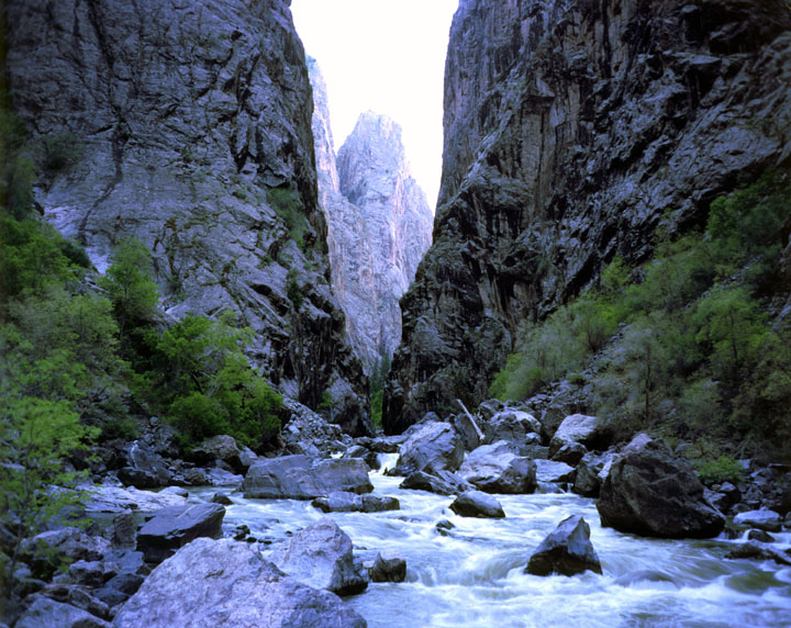 A rushing stream flowing through rocks at the base of the canyon, looking up through the dark narrow walls towards the rim far above.