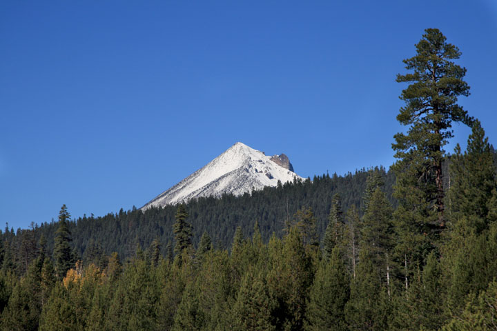 A snow-covered peak rising into the blue sky from behind a forest ridge.