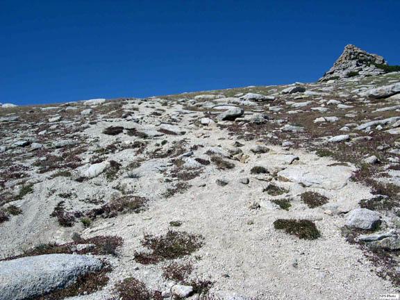 An informal trail, developing along Mt. Hoffman.