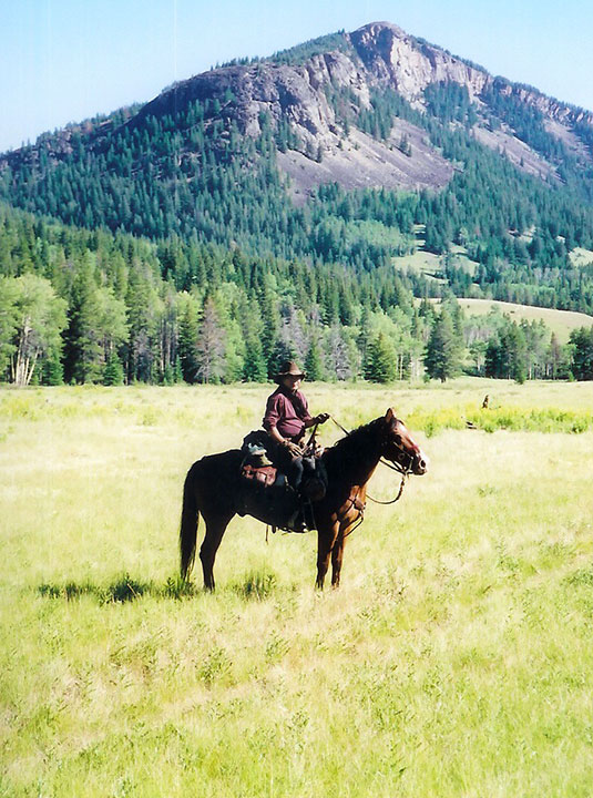 A horse and rider stand in a grassy prairie in front of a mountain