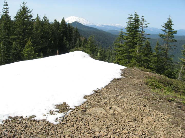 Looking past a bare slope and large pile of snow in the foreground bordered by dense forest, stretching away into the distance where it meets with a massive snowcapped peak along the horizon.
