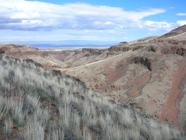 The ends of canyons lead into rolling hills that turn into flatlands in the far distance.