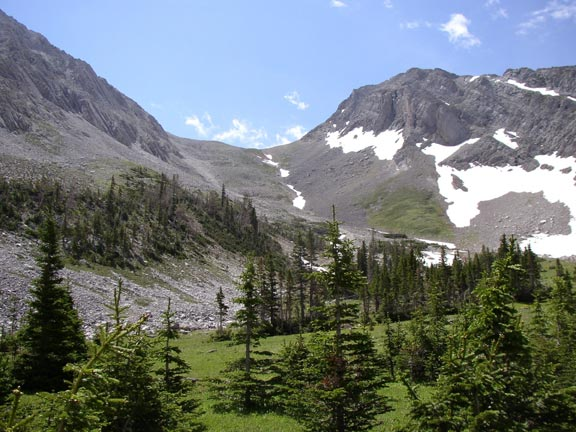 Open meadow dotted with small evergreen trees opens to high alpine drainage, bordered by rocky faces laced with snow.