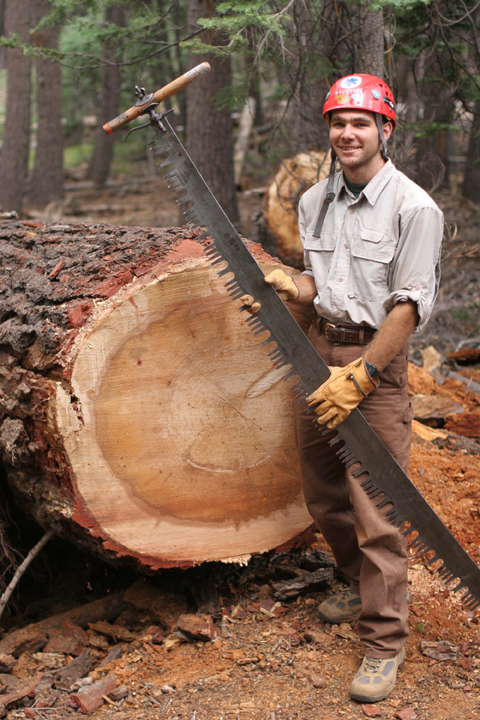 Aaron Tellion, a volunteer, poses with a crosscut saw next to a freshly sawed tree trunk.