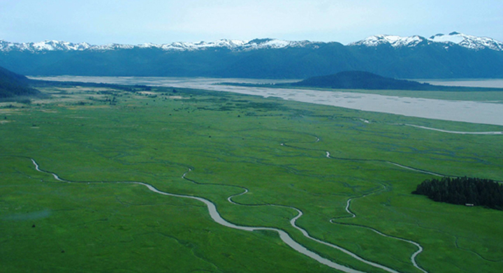 A large flat full of lush green grass scattered with many small streams snaking acrossed it with snow capped mountains in the distance.