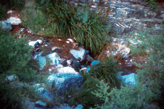 A hiker filters water at Hermit Creek, inside Grand Canyon National Park. large boulders, shrubs, and trees line the creek.