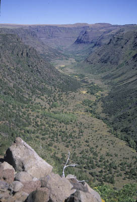 A view form one of the high plateaus captures Big Indian Gorge in Oregon.