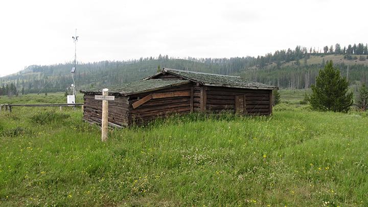 A cabin in green grass