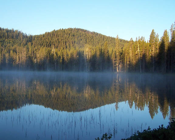 An early morning photo of Puck Lake where mist lines the edge of the lake and the still water reflects the bright morning sky and the pine trees.