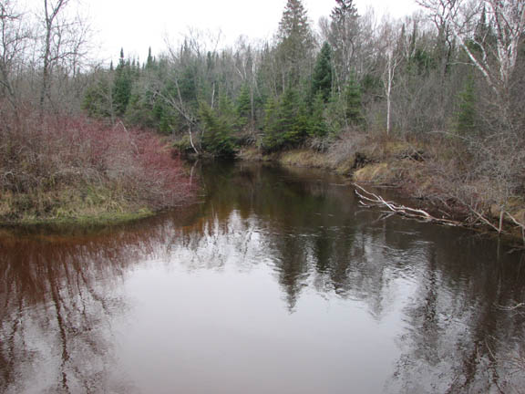 This photo captures the still water of the Carp River in the Mackinac Wilderness. The rivers edge houses leafless trees and some shrubery.