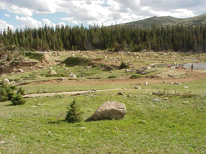 A large boulder sitting in a grassy meadow, next to a small drainage filled with large rock, along the edge of a dense forest.