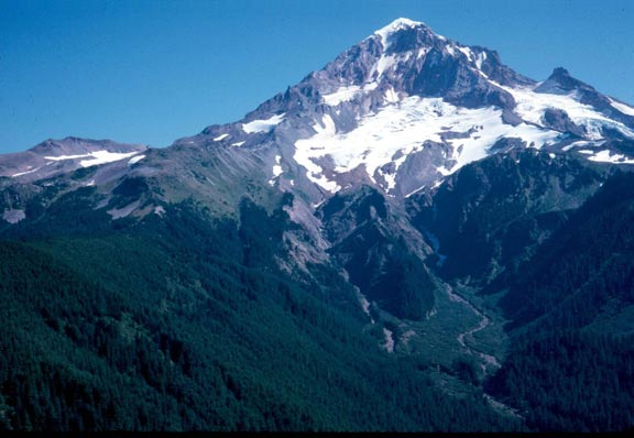 A jagged snowcapped peak, draining down to a forested valley below.