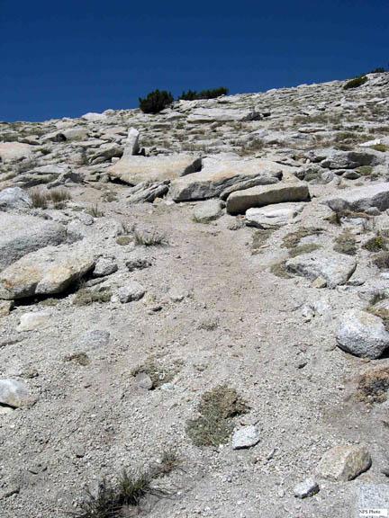 An informal trail developing along Mt. Hoffman