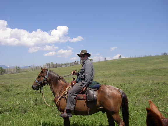A man in a cowboy sits on the back of a brown horse, in the middle of a large grassy meadow.
