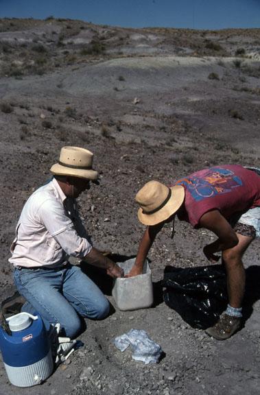 Two people do minimum impact paleological work.