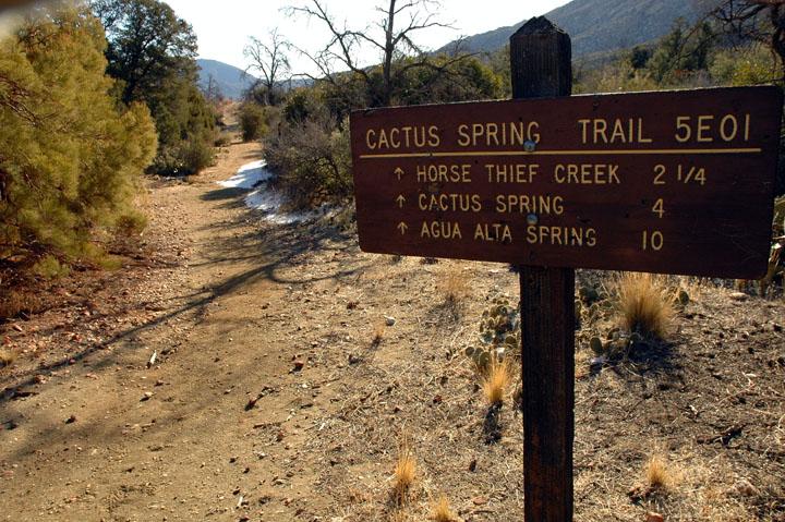 A trail sign along a desert trail. Dense green foliage borders the trail.