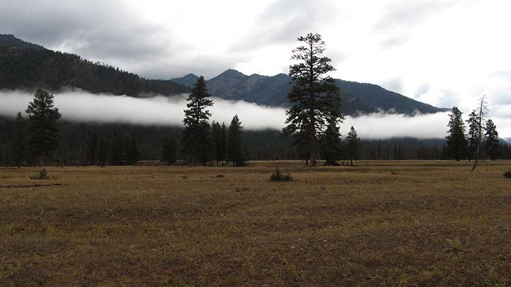 Low clouds above a prairie