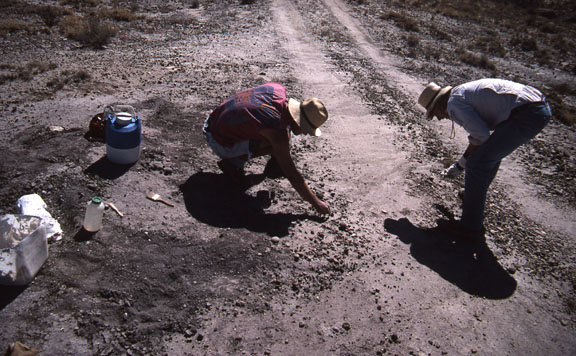 Minimum impact paleological work. Two researchers do surface collection at site and collect data from the makeshift road.