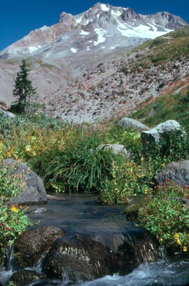 A small clear stream, flowing over a rock in an open meadow, with the high peak looming in the background.