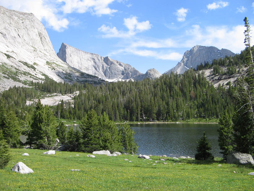 An idyllic grassy meadow along the edge of a forested alpine lake, with towering mountain faces looming in the near distance.