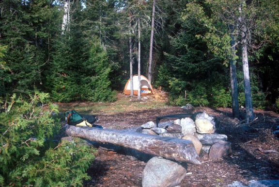 A campsite near Frost Lake. The tent is nestled between many pine trees.