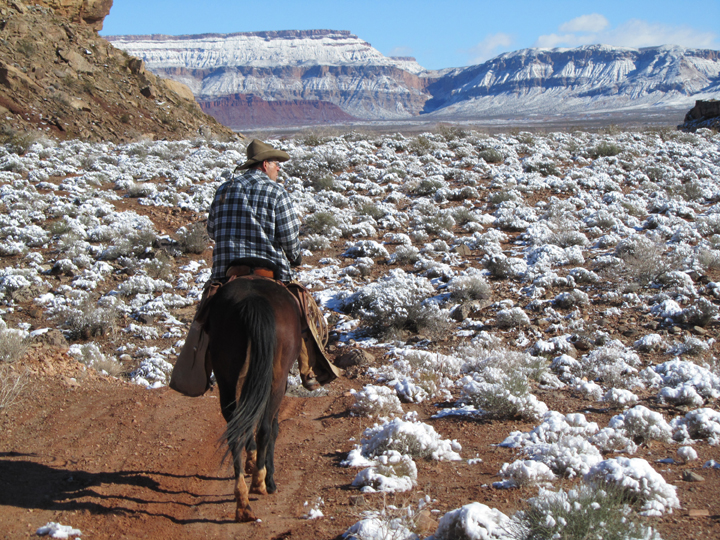 A man rides through snow covered sagebrush with sloping mountains dusted with snow in the background.
