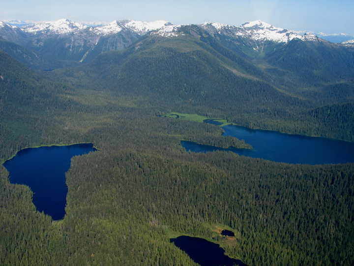 A thick forest surrounds three deep blue lakes with large snow-capped mountains in the background.