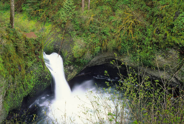 Water shoots from Punchbowl Falls into a deep dark pool below.