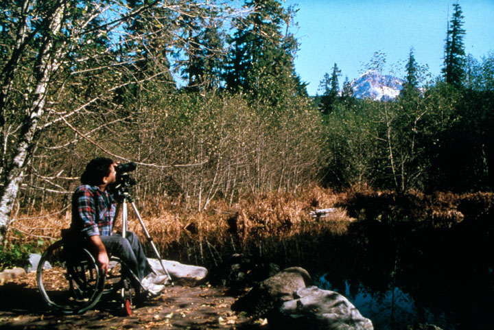 A visitor in a wheelchair sits next to a small pond, photographing a distant mountain peak over the trees.