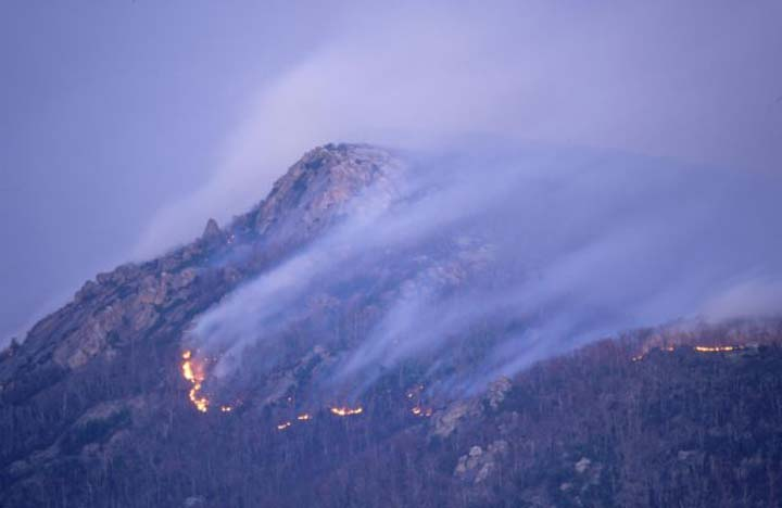 A large forested hill sliced by a line of orange fire, covering the rest of the slope with a veil of gray smoke.