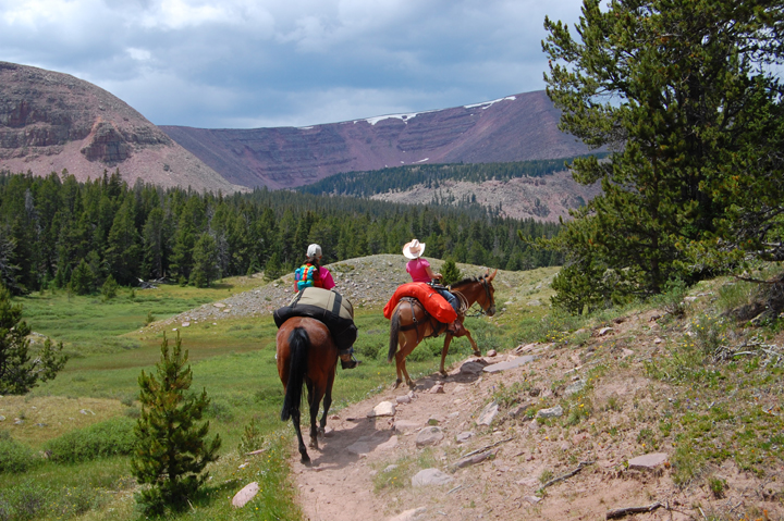 Two travelers ride along a rocky trail on the edge of a large green meadow with mountains in the background.
