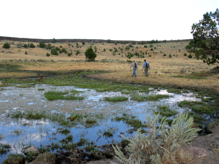 Two men walk beside a muddy water hole surrounded by grasslands.